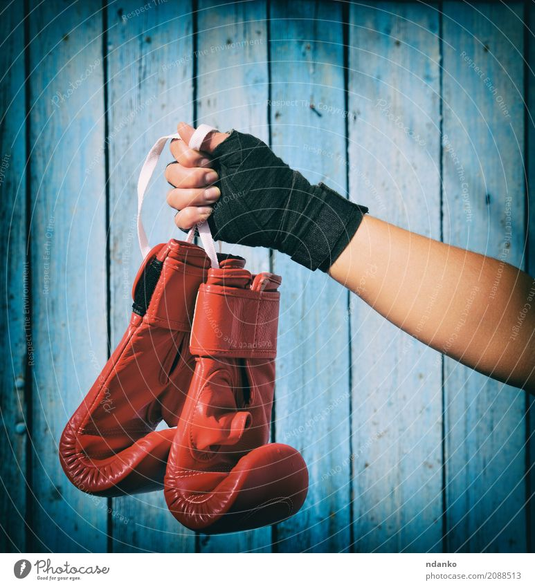 pair of red kickboxing gloves Human being Woman Youth (Young adults) Blue Hand Red 18 - 30 years Black Adults Sports Wood Body Success Fitness Rope Protection