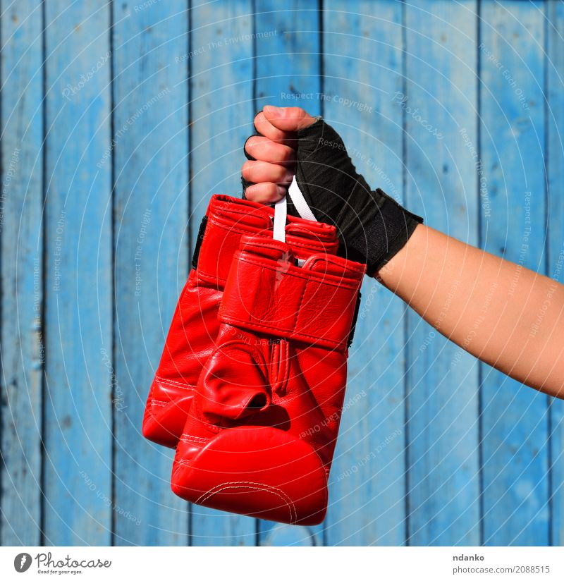 Red boxing gloves Human being Woman Youth (Young adults) Hand 18 - 30 years Black Adults Sports Success Idea Might Athletic Hang Leather Hold