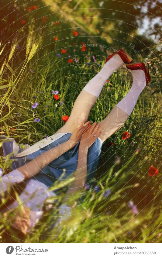 Human being Youth (Young adults) Young woman Summer Flower Red Girl 18 - 30 years Adults Life Meadow Feminine Dream Lie 13 - 18 years Footwear