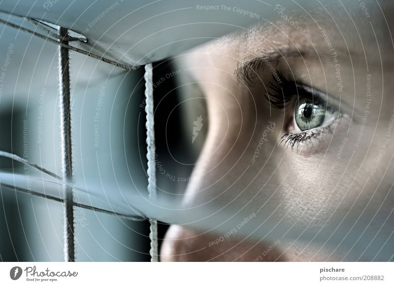 Watch Out! Feminine Young woman Youth (Young adults) Face Eyes 18 - 30 years Adults Window Observe Looking Wait Dark Curiosity Blue Fear Expectation