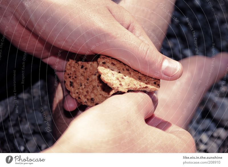 Summer Hand Calm Food Fingers To hold on Delicious To break (something) Thumb Cookie Crumbs Action Human being