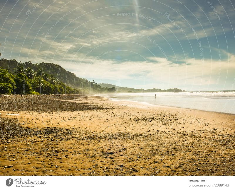 Beach ocean n light Nature Vacation & Travel Summer Water Sun Tree Landscape Ocean Relaxation Clouds Spring Tourism Sand Trip Earth