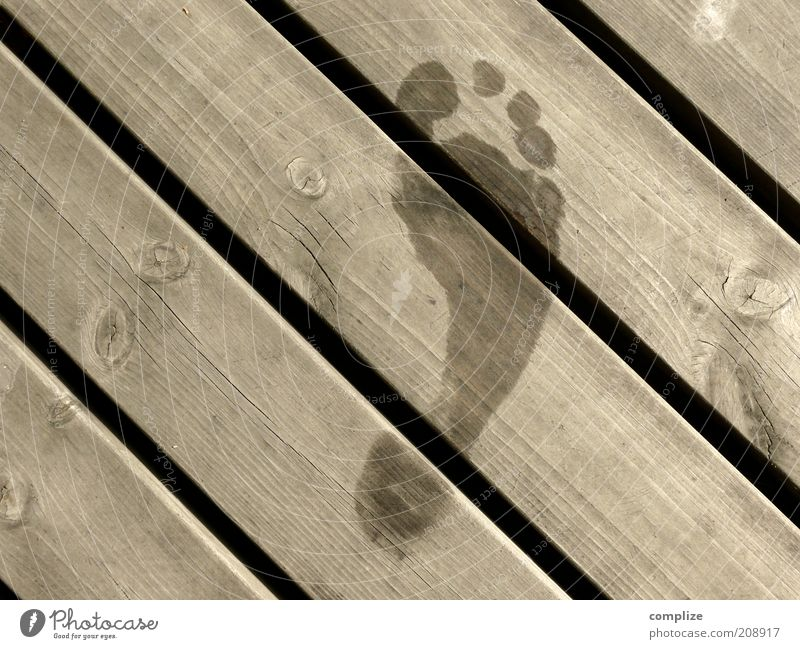 Vacation & Travel Water Summer Relaxation Calm Wood Line Going Feet Contentment Wet Uniqueness Symbols and metaphors Swimming Tracks Well-being