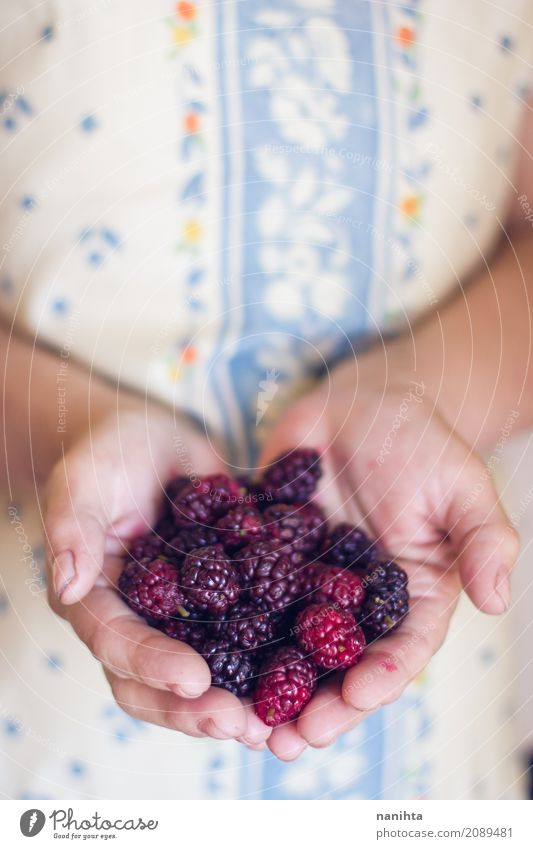 Old woman's hands holding blackberries Food Fruit Blackberry Nutrition Organic produce Vegetarian diet Human being Feminine Young woman Youth (Young adults)