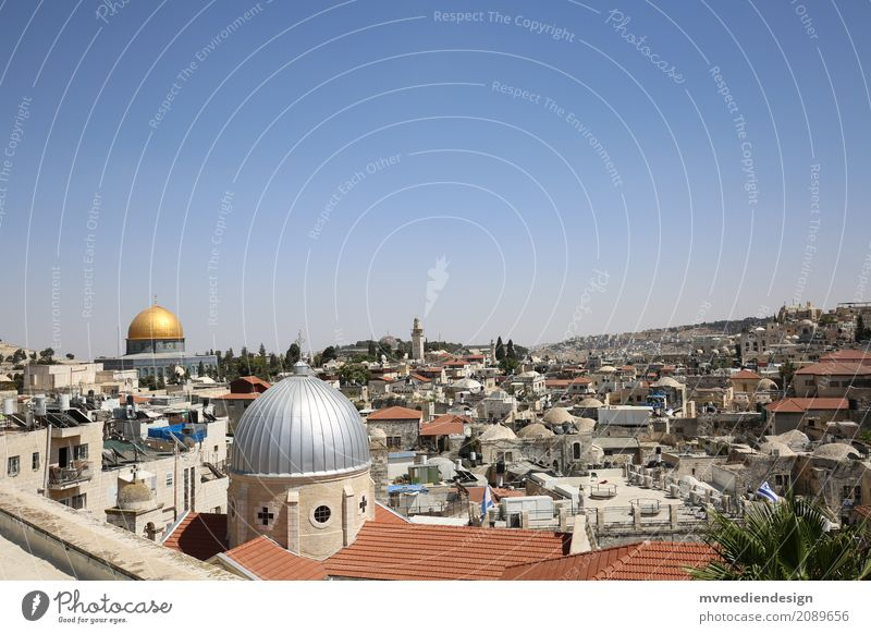 View of the al-Aqsa Mosque in Jerusalem Culture Study Al-Aksa mosque West Jerusalem Israel Gold Domed roof Manmade structures Religion and faith