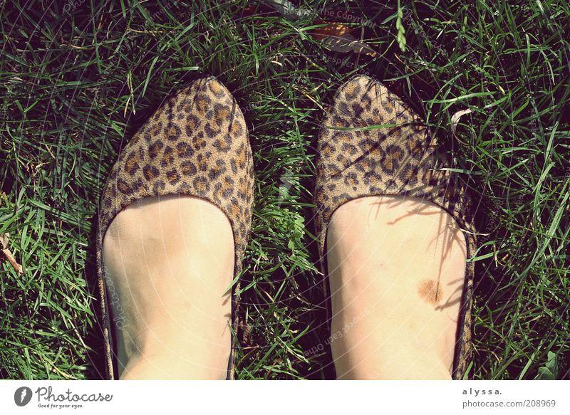 Leopard foot. Feminine Feet 1 Human being Summer Grass Footwear Uniqueness Pair of shoes Bird's-eye view 2 Modern Fashion Detail Hip & trendy Pattern