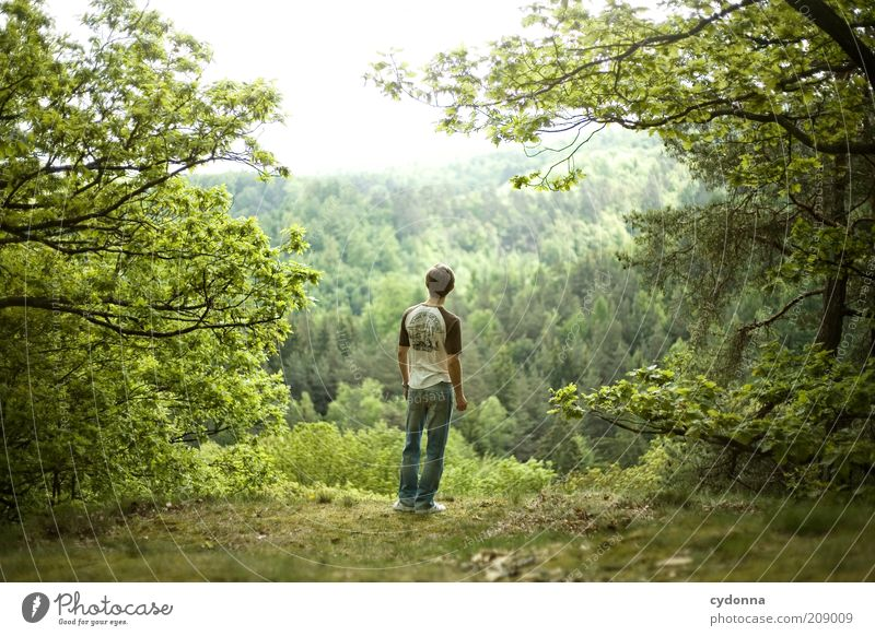Human being Nature Youth (Young adults) Green Tree Calm Adults Forest Far-off places Relaxation Environment Landscape Life Emotions Freedom Spring