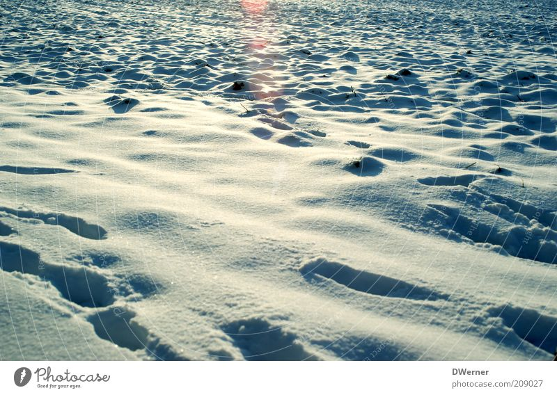 Nature White Blue Winter Snow Landscape Environment Bright Weather Earth Ice Field Contentment Glittering Trip Hiking
