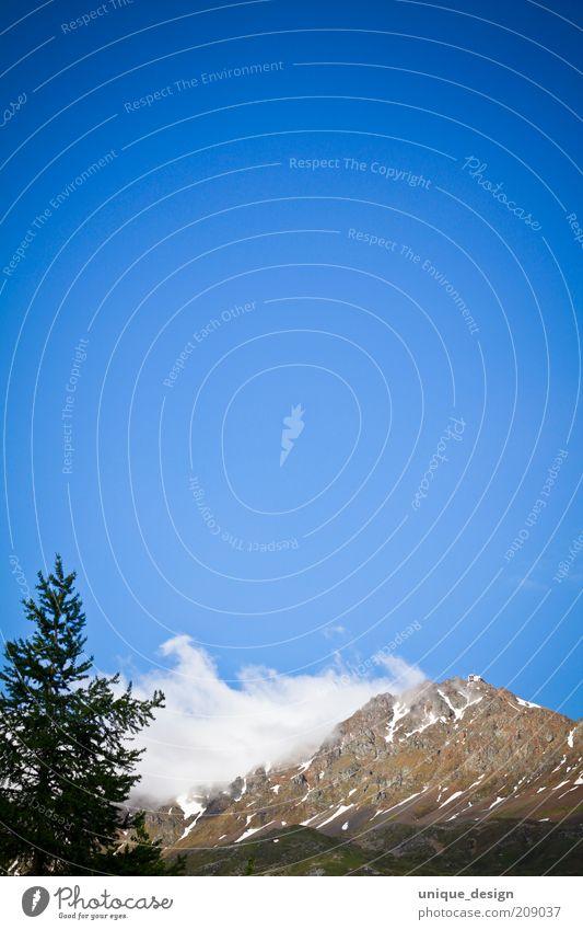 Nature Sky Tree Plant Summer Clouds Mountain Landscape Environment Rock Switzerland Alps Fir tree Peak Beautiful weather Blue sky