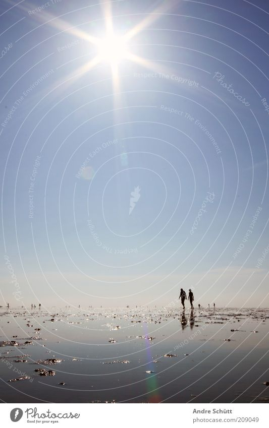 Planet 53.889419 / 8.652141 Vacation & Travel Summer vacation Ocean Human being Environment Climate Mud flats Coast Beach Sky Blue Reflection Water