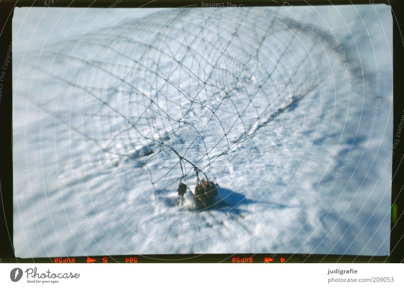 snow fence Nature Winter Snow Exceptional Cold Broken Wire netting Fence Line Reticular Net Colour photo Exterior shot Experimental Deserted Blur