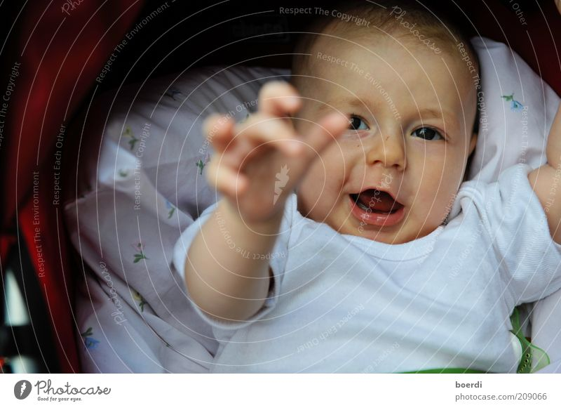 Human being Child Joy Face Life Funny Infancy Baby Lie Beginning Study Future Safety Cute Curiosity Near