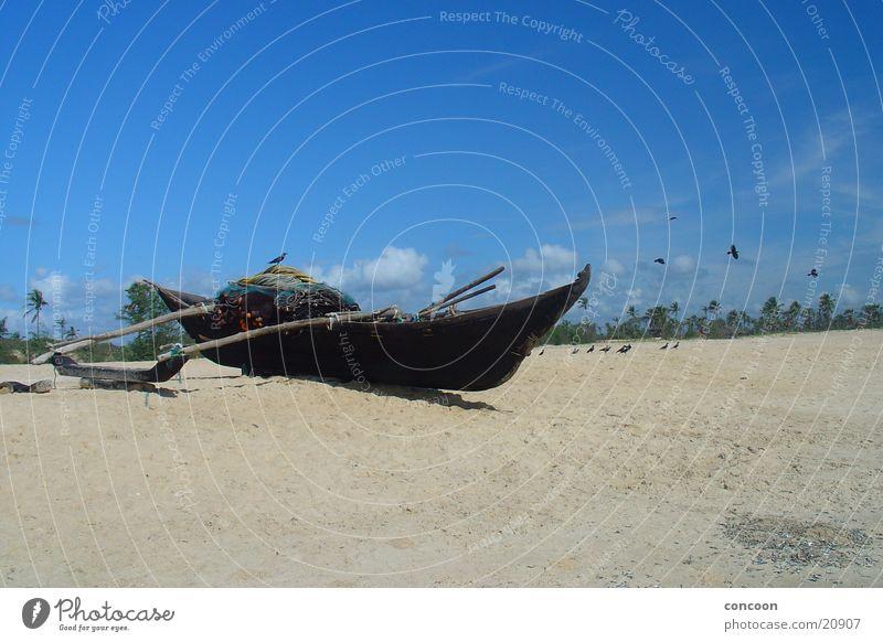 Sun Ocean Beach Calm Watercraft India Palm tree Goa