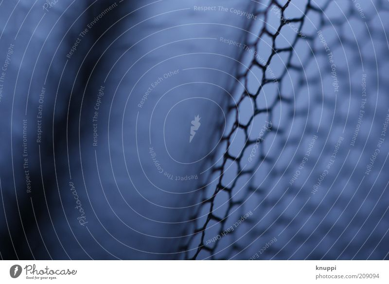 Beautiful Blue Black Gray Line Small Network Net Simple Protection Stripe Sharp-edged Loop Copy Space left Microscope Reticular