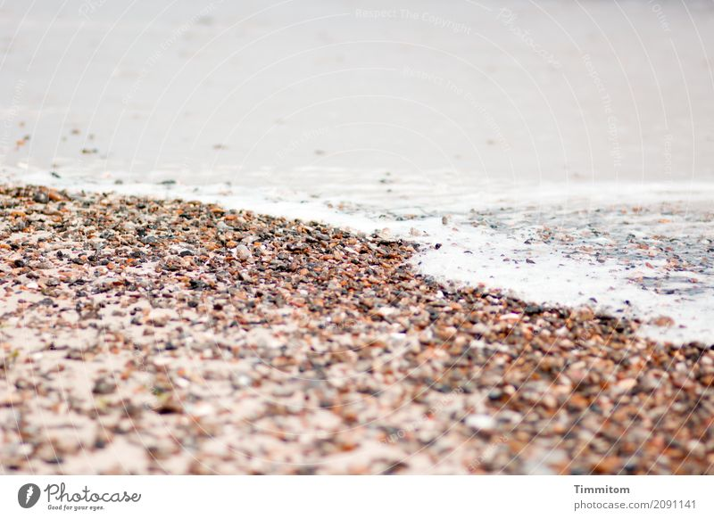 cooling down. Vacation & Travel Beach Waves Environment Elements Sand Air Water North Sea Denmark Stone Simple Natural Brown Gray White White crest Colour photo