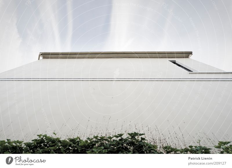 Sky White Blue Plant House (Residential Structure) Wall (building) Window Wall (barrier) Building Line Bright Architecture Facade Empty Perspective