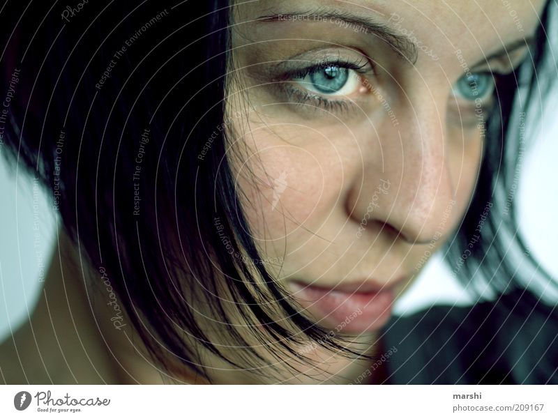 BLUE PHASE Human being Feminine Young woman Youth (Young adults) Woman Adults Head Hair and hairstyles Face 1 Black-haired Observe Dream Blue Emotions Moody