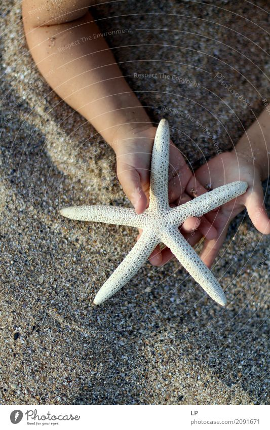 child holding a starfish Lifestyle Style Wellness Harmonious Well-being Contentment Senses Relaxation Calm Meditation Leisure and hobbies Playing