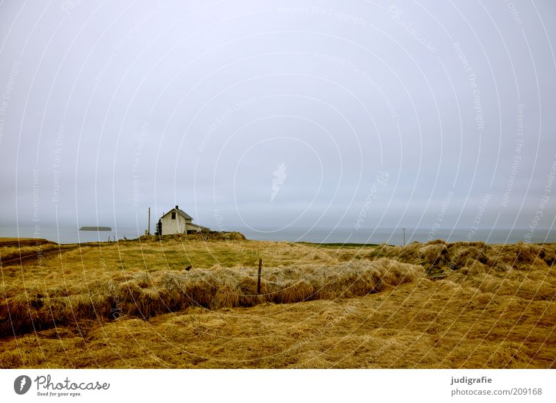 Nature Ocean Green Calm House (Residential Structure) Loneliness Grass Gray Building Landscape Moody Coast Environment Travel photography Uniqueness Wild
