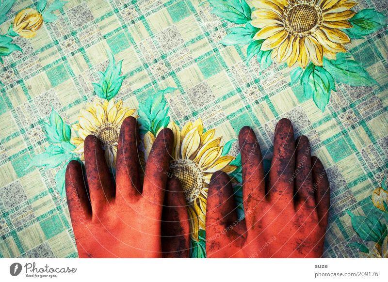 All pigeons fly hoooooch ... Leisure and hobbies Summer Garden Table Work and employment Gardening Hand Spring Gloves Lie Break Work gloves Gardener Rest