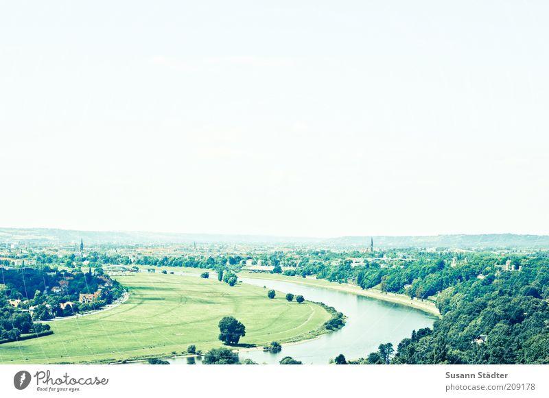 Nature Sky Tree Green Summer Freedom Landscape Trip Tourism River Vantage point Culture Dresden Skyline Curve Elbe