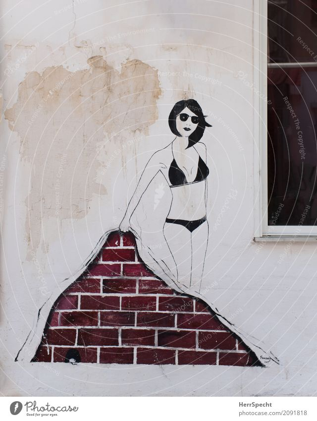 Bare House (Residential Structure) Manmade structures Building Wall (barrier) Wall (building) Facade Window Graffiti Funny Town Art Street art Woman Bikini