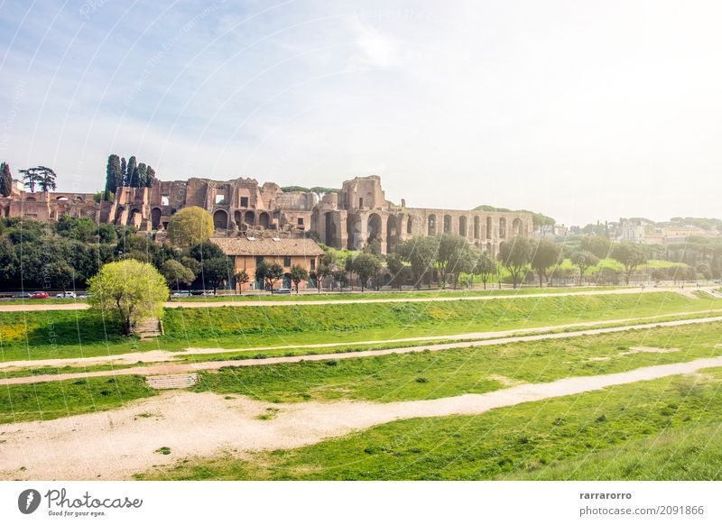 Circus Maximus in Rome Environment Nature Landscape Plant Italy Small Town Tourist Attraction Landmark Monument circus maximus Relaxation Looking Old Natural