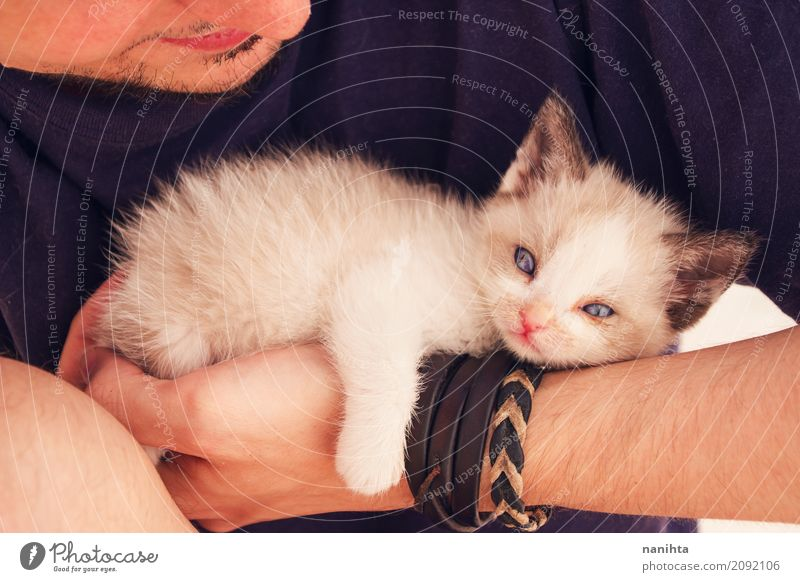 Young man holding a baby siamese cat Human being Masculine Youth (Young adults) 1 18 - 30 years Adults T-shirt Bracelet Designer stubble Animal Pet Cat