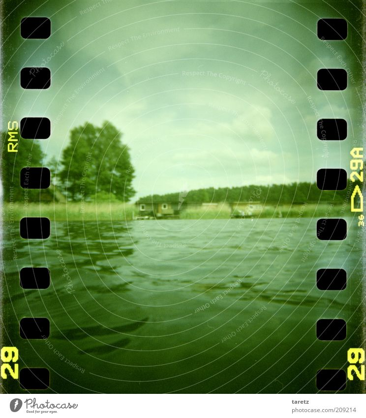 Sky Nature Water Green Tree Summer Calm Relaxation Environment Landscape Lake Natural Wet Trip Beautiful weather Idyll