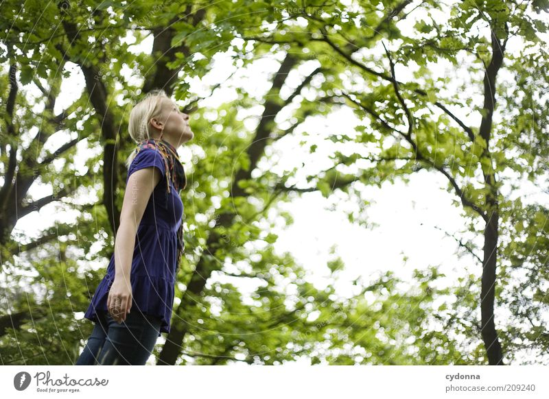 Nature Youth (Young adults) Beautiful Tree Calm Far-off places Forest Relaxation Life Freedom Landscape Environment Movement Happy Spring Dream