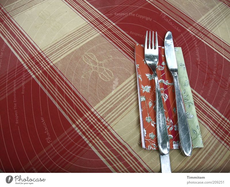 oh! oh! Nutrition Cutlery Knives Fork Restaurant Going out Wait Glittering Clean Red Reckless Pattern Checkered Napkin Arrangement Tablecloth Colour photo