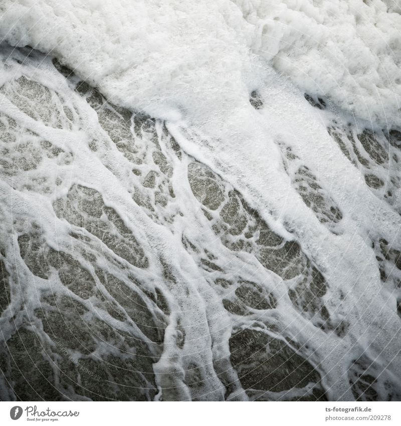 Nature Water White Ocean Gray Coast Waves Environment Wet River Wild Gale Elements Chaos Pattern Flow