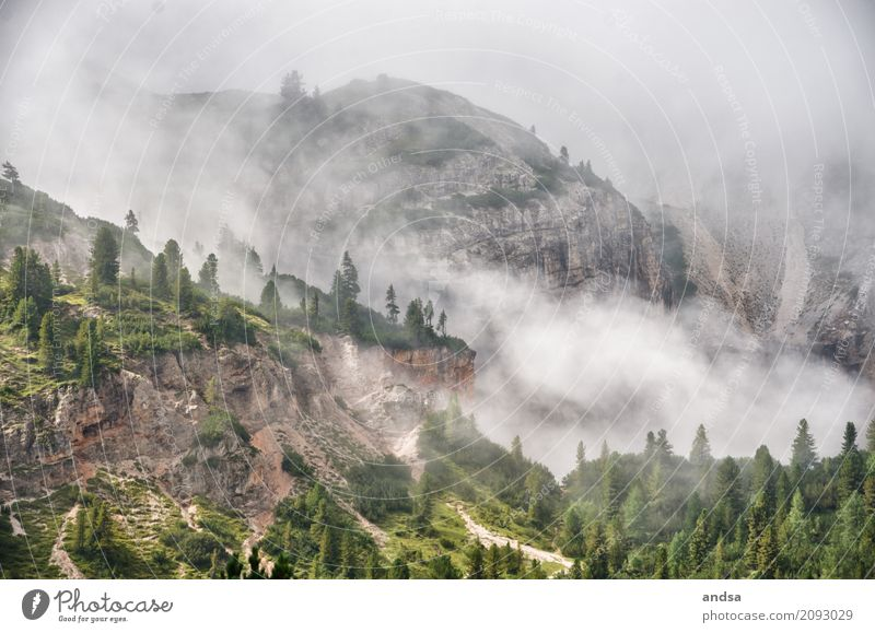 Fog in the Dolomites Vacation & Travel Trip Adventure Far-off places Freedom Expedition Camping Summer Summer vacation Mountain Hiking Nature Landscape