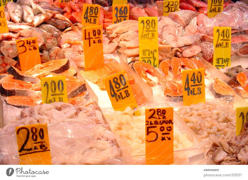 Fresh Markets USA New York City Sushi Fish market Chinatown Farmer's market