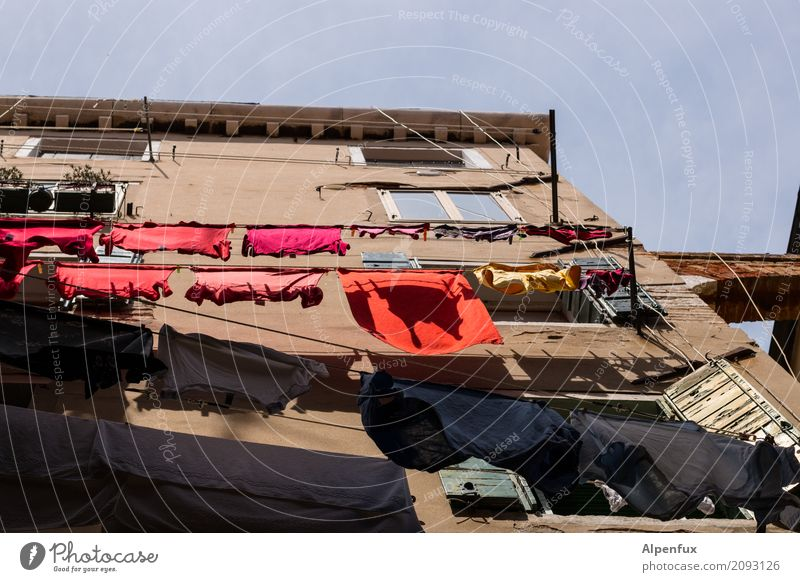 Shared flat | Washing day Venice Italy Outskirts House (Residential Structure) Building Wall (barrier) Wall (building) Window Laundry Clothesline Clothes peg