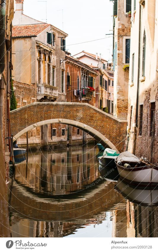 Bridge over untroubled water Venice Italy Town Port City Old town House (Residential Structure) Window Monument Hope Belief Beginning Esthetic Happy Stagnating