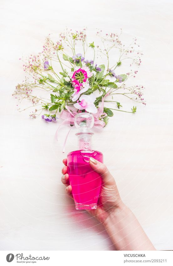 Female hand holds bottle with pink lotion and flowers Style Design Beautiful Personal hygiene Cosmetics Perfume Spa Human being Feminine Woman Adults Hand Plant
