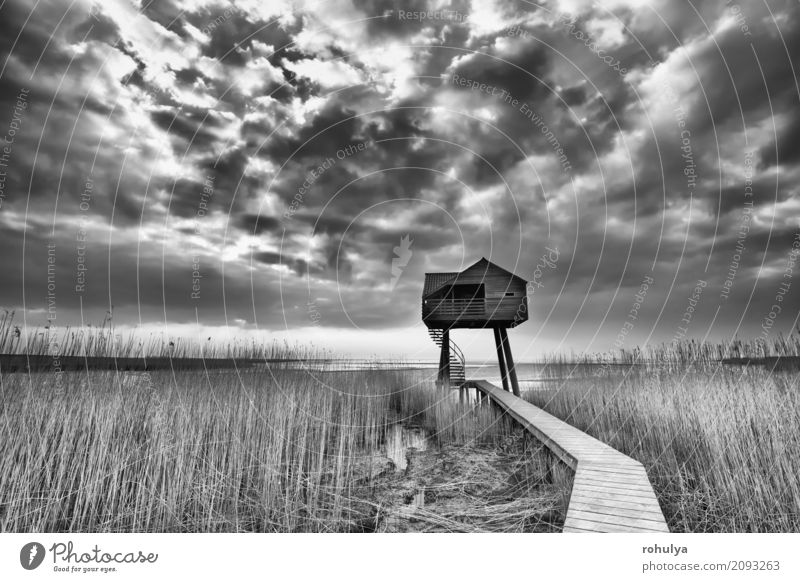 path to wooden observation tower, Dollard, Netherlands House (Residential Structure) Nature Landscape Sky Clouds Weather Coast North Sea Building Lanes & trails