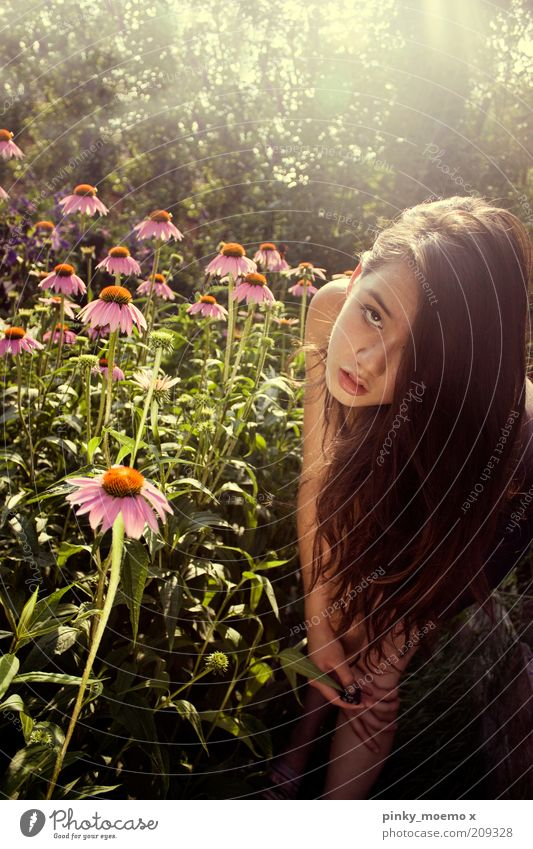 Human being Nature Youth (Young adults) Flower Feminine Blossom Garden Hair and hairstyles Pink Stand Long Brunette Long-haired Young woman Perspective
