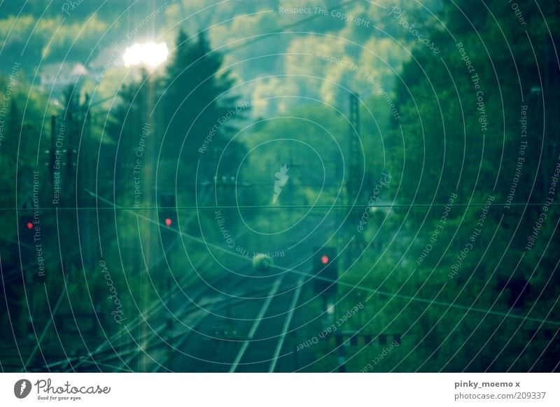 Green Forest Dark Bright Railroad Railroad tracks Traffic light Overhead line Railroad system Stop signal