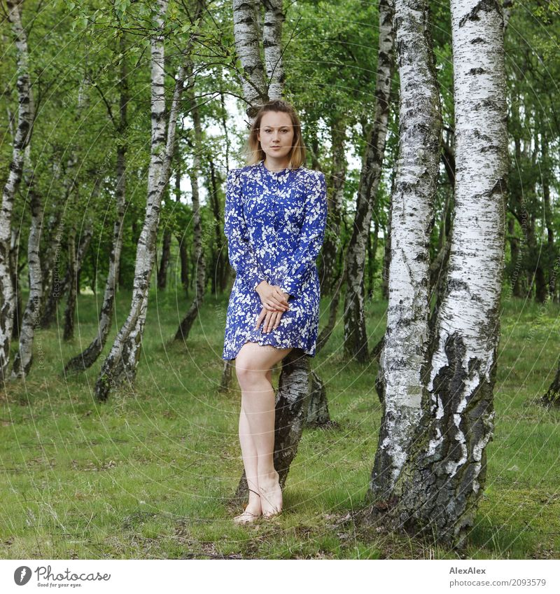 backing Beautiful Harmonious Well-being Trip Young woman Youth (Young adults) Legs 18 - 30 years Adults Landscape Summer Beautiful weather Tree Birch wood Dress