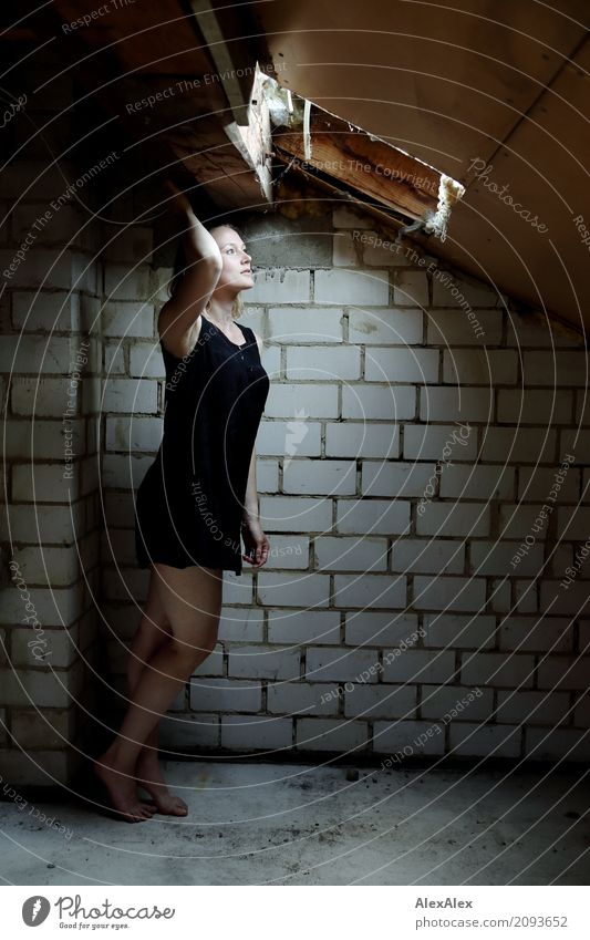 Young woman stands barefoot in the attic in front of the skylight Attic Skylight Roof beams Brick wall Youth (Young adults) Legs Feet 18 - 30 years Adults Dress