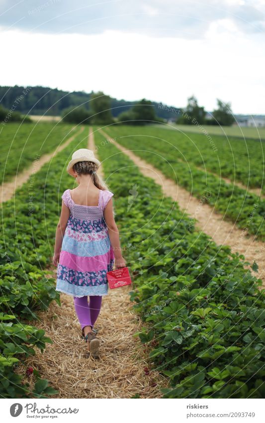Human being Child Nature Plant Summer Landscape Girl Environment Spring Healthy Natural Feminine Going Free Field Fresh