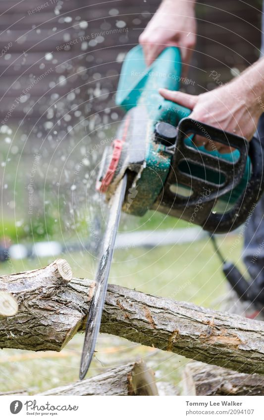Chainsaw in action Garden Work and employment Profession Industry Tool Man Adults Hand Tree Forest Wood Safety Lumberjack chain power Firewood Log Sawdust