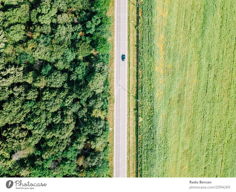 Aerial Drone View Of Moving Cars On Country Road Nature Vacation & Travel Summer Colour Green Tree Landscape Far-off places Forest Environment Street