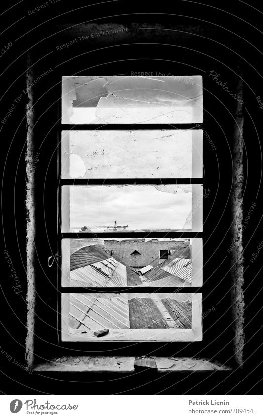 Window above the roofs Deserted Manmade structures Building Architecture Roof Old Looking Dirty Dark Broken Black & white photo Interior shot Shadow Contrast