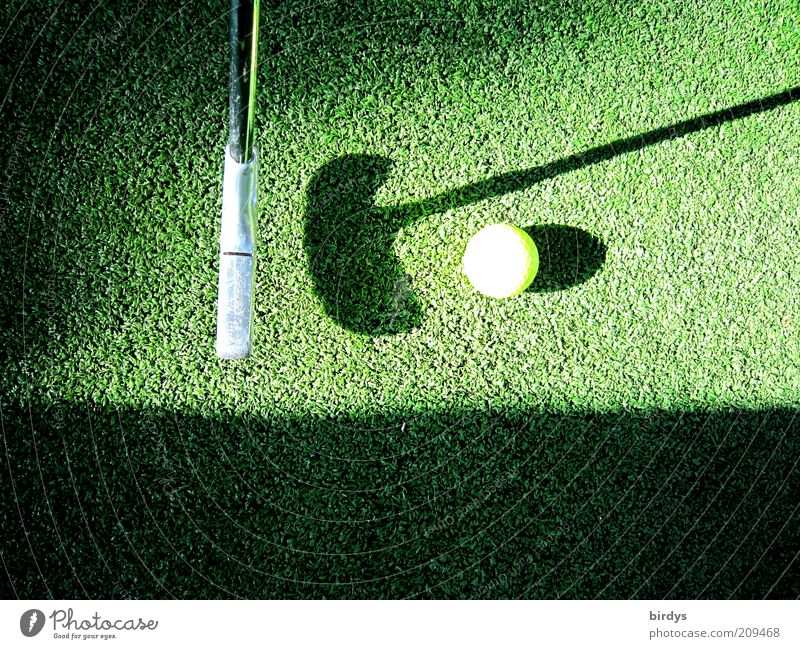 Green Yellow Sports Playing Leisure and hobbies Grass surface Concentrate Golf Golf course Golf club Shadow play Golf ball Tee off Mini golf