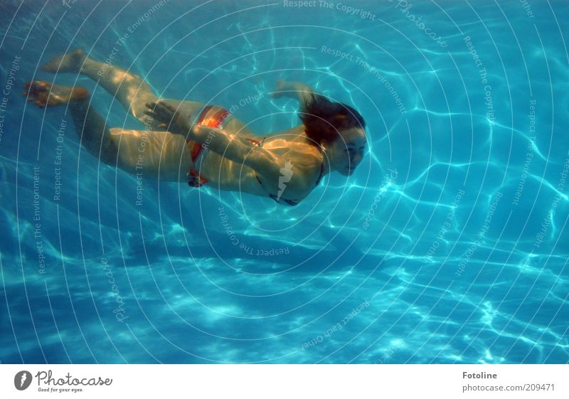 Woman Human being Youth (Young adults) Blue Feminine Body Skin Adults Wet Swimming pool Thin Dive Swimming & Bathing Hover