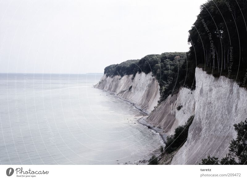 Chalk Cliffs on Rügen Nature Water Blue Calm Far-off places Landscape Coast Environment Island Vantage point Bay Elements Baltic Sea Ocean