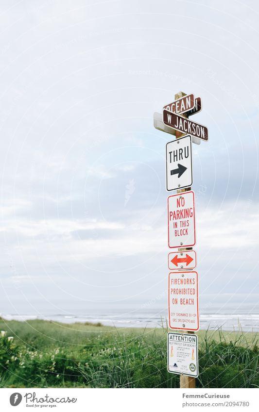 Plant Ocean Characters Arrangement Signs and labeling Arrow Firecracker Orientation Parking Respect Warn Pacific Ocean Pacific beach